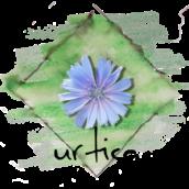 urtica naturgärten